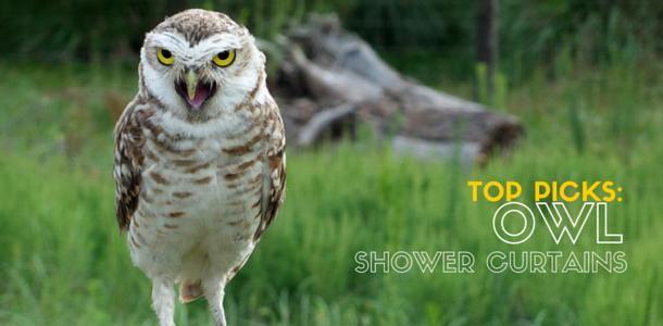 Best Owl Shower Curtains