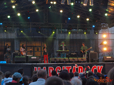 Concert Zilele Toplitene