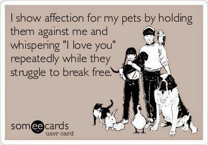NPD's family toon, joke, irony ' they squash pets, not love them