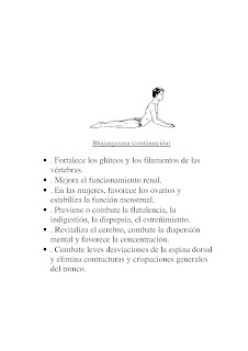 Texto e imágenes extraídas del libro de yoga de ramiro calle y