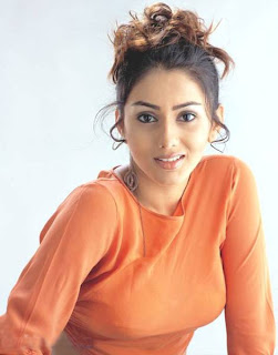 Namitha Hairstyle Picture Gallery - Indian Celebrity Hairstyle Ideas