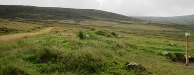On Craig Vallich, near Ballater, Deeside Walks