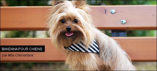 bandanas pour chiens unis ou r versibles par mlle cl mentine woof mag 39 le blog des chiens. Black Bedroom Furniture Sets. Home Design Ideas
