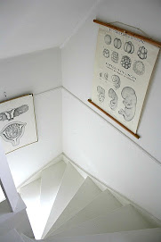Vitmålad trapp