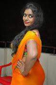 Jayavani glam pics in saree-thumbnail-6
