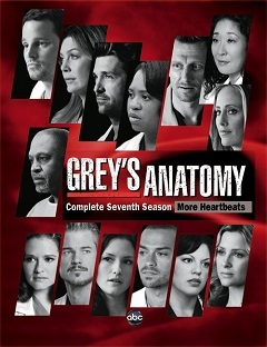 Greys Anatomy - A Anatomia de Grey  4ª Temporada Completa Séries Torrent Download capa
