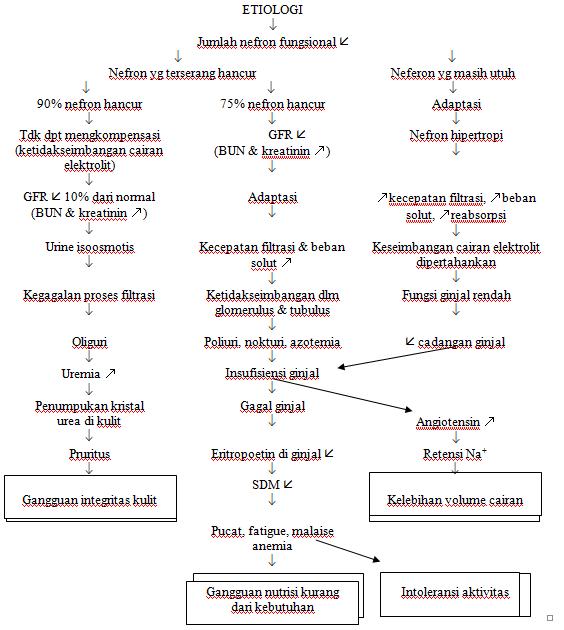 Gastritis Kronis Pdf