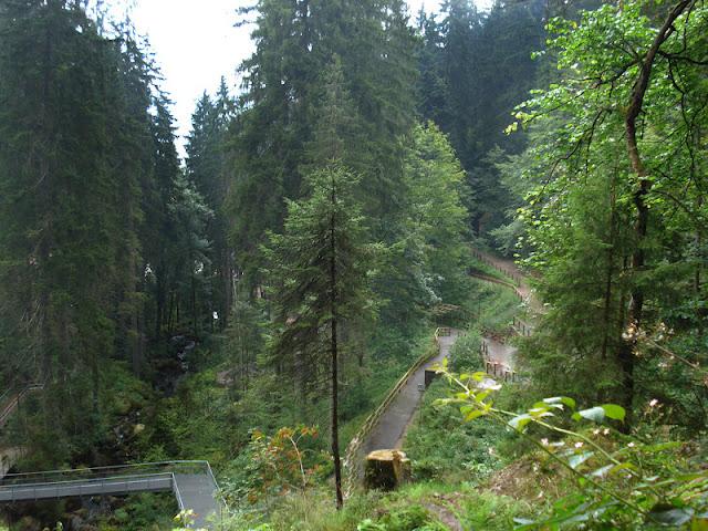 ALEMANIA: La Selva Negra