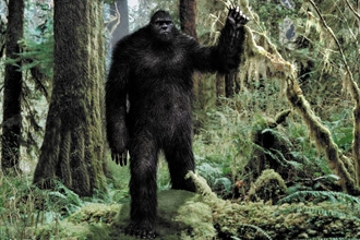Does bigfoot exist essay