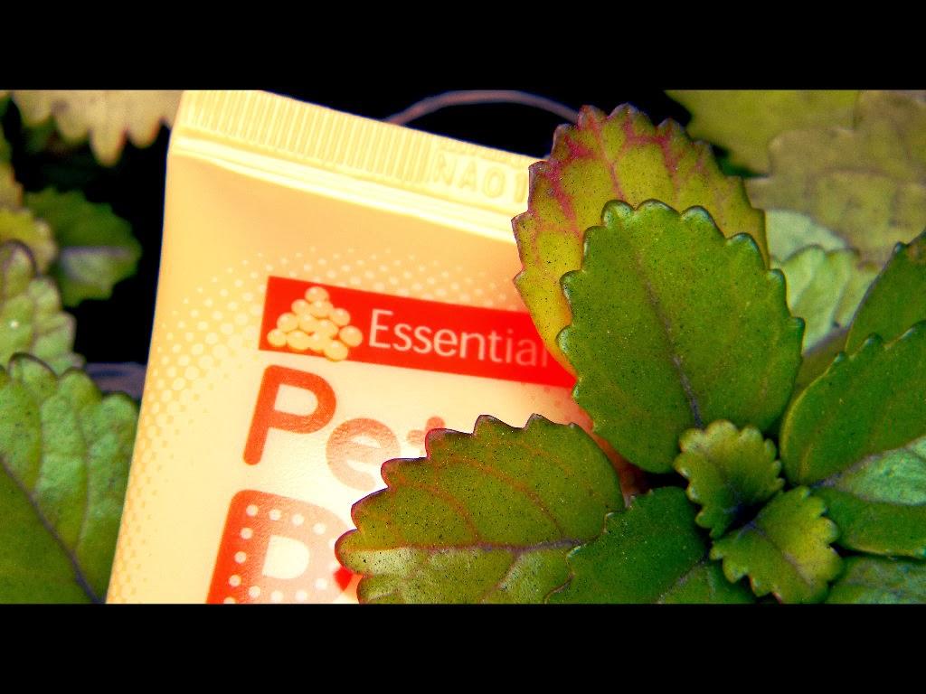 Reseña de cosméticos coreanos: Reseña de BB Cream Essential Holika ...