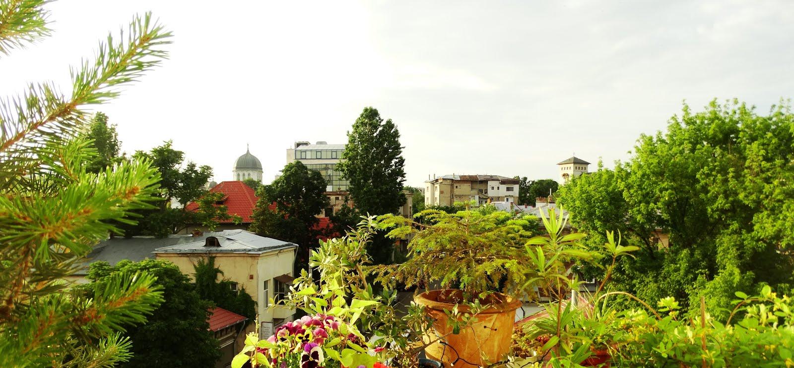 Amintiri din București