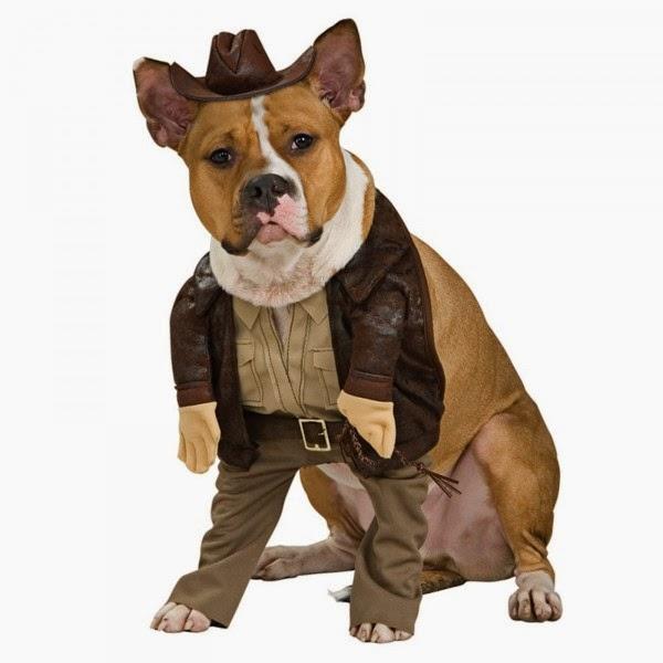 disfraces para perros, ropa para perros, accesorios para perros, regalos originales, regalo original para perros