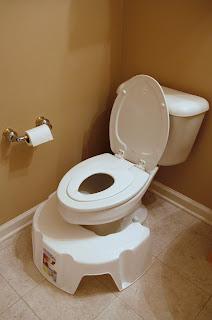 Child Friendly Toilet
