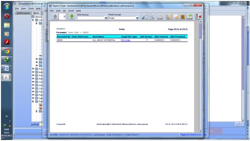 Report Sales order1