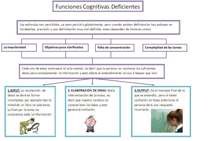 Funciones cognitivas de un profesor