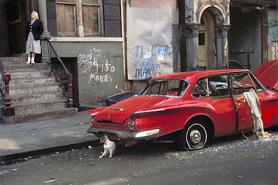 Helen Lewitt - Cat next to red car, new york, 1973