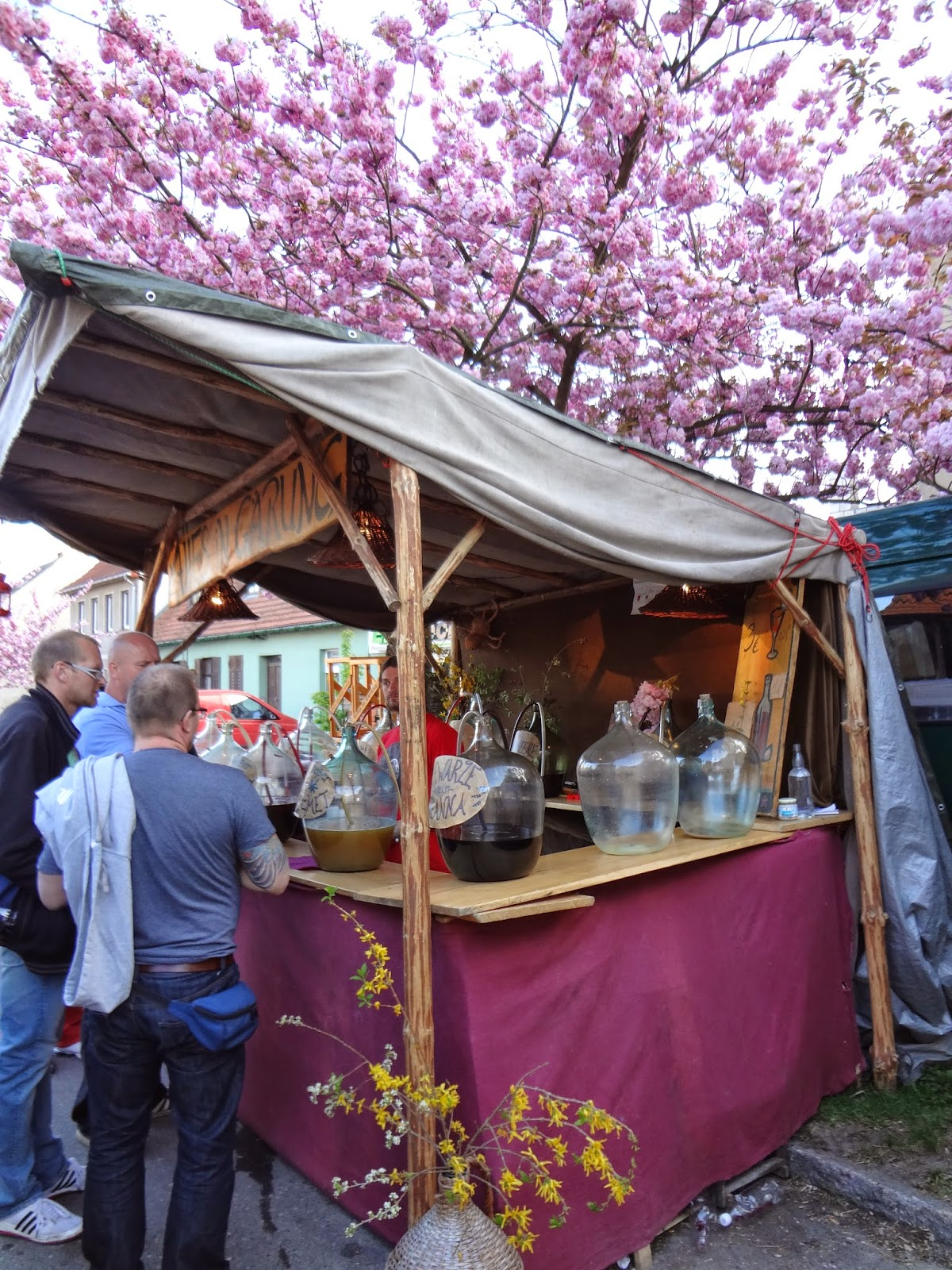 Wines at Germany's Fruit Wine Festival