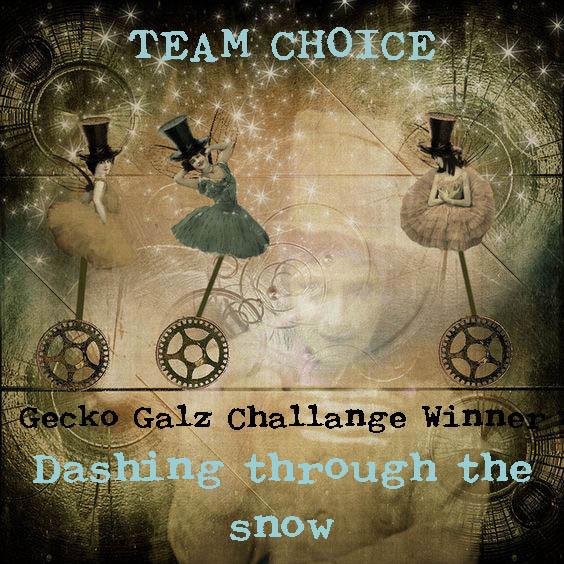 Gecko Galz Challange Winner
