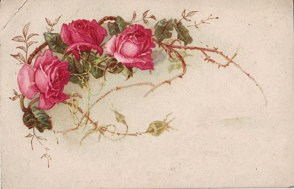 http://1.bp.blogspot.com/-zQekiuFRzfs/UmOre9UfdRI/AAAAAAAABi0/YZWOYAYHHEE/w1024-h659-no/roses.png