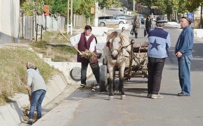 Románia, díszpolgár, Erbiceni, önkormányzat