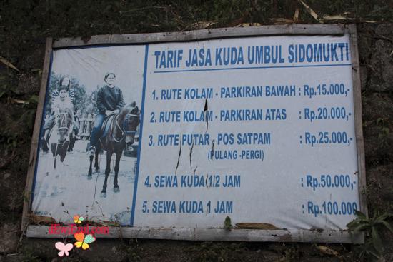 berapa tarif naik Kuda di Umbul sidomukti Semarang jateng