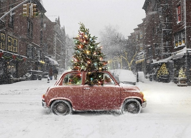 Red Bug With Christmas Tree In The Snow Holiday Gift Guide Holiday Cheer