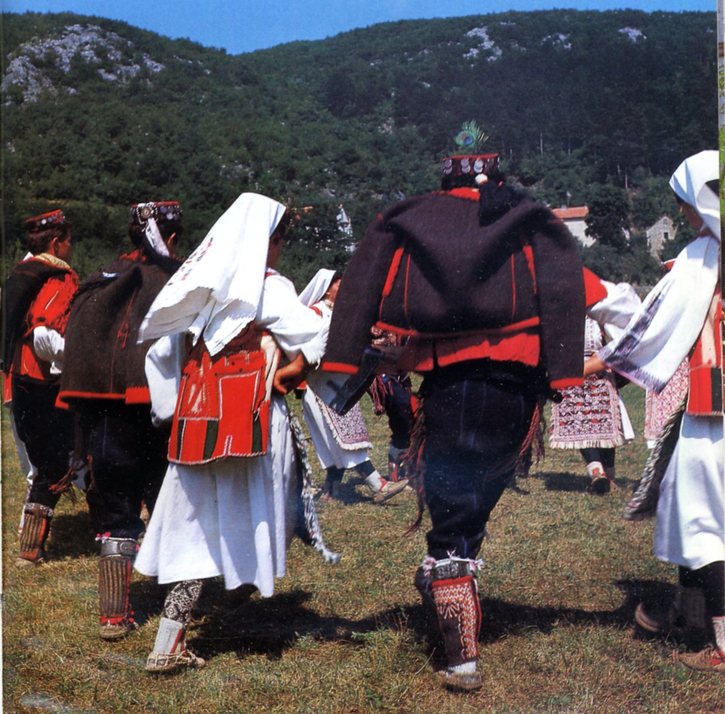 dalmatia muslim Are bosnian muslims different than other muslims, and are they white  the orthodox serbs became the dominant regional force and drove the bogomils to dalmatia and .