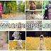 مجموعة صور اطفال عالية الجوده لسطح المكتب وغلاف الفيس بوك