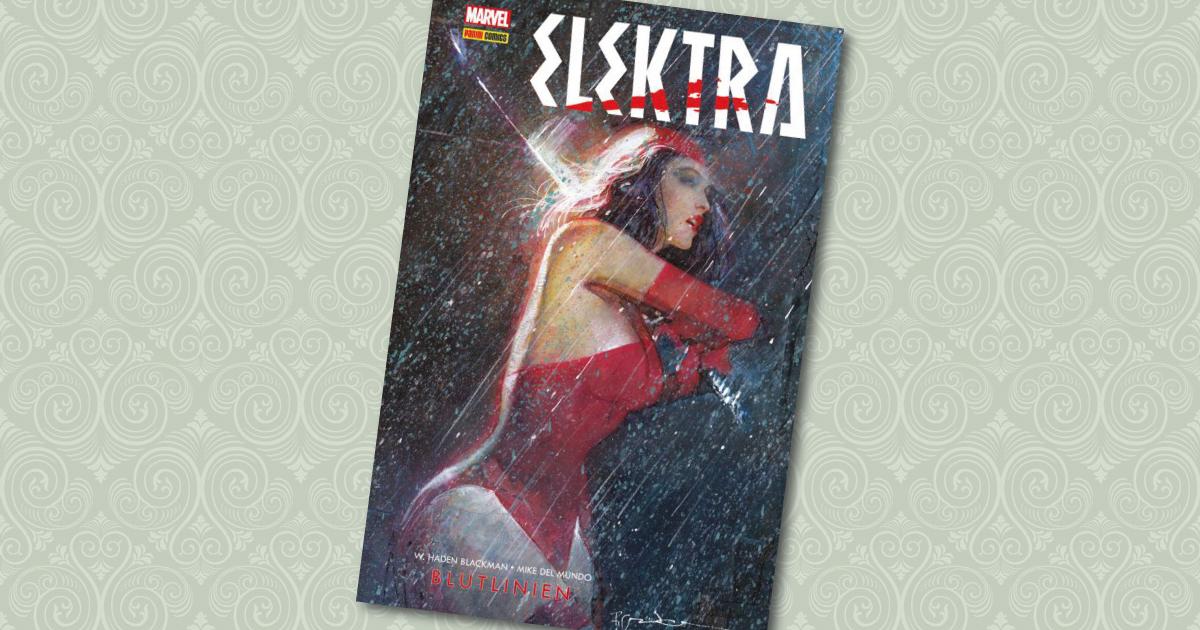 Elektra Blutslinien Panini Comic Cover