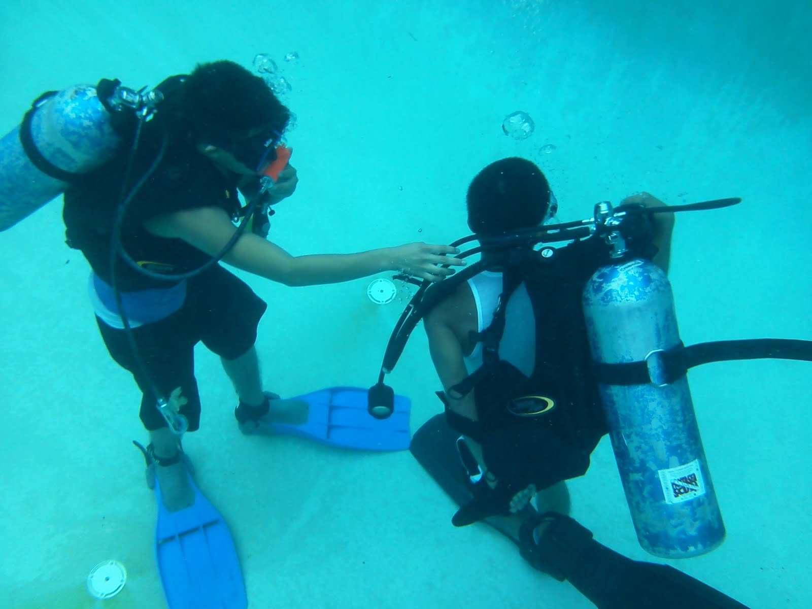 the sure ways of becoming a certified scuba diver Becoming a certified scuba diver means that you have learned and developed the skills that you need to stay safe while having fun under water ask what the price includes, so you have a way of making an apples-to-apples comparison a visit to your local dive center can also provide you with.