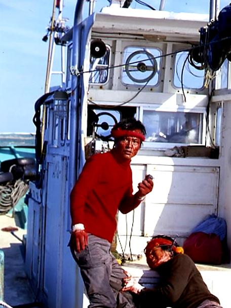 人生論的映画評論・続: <b>魚影</b>の<b>群れ</b>('83) 相米慎二