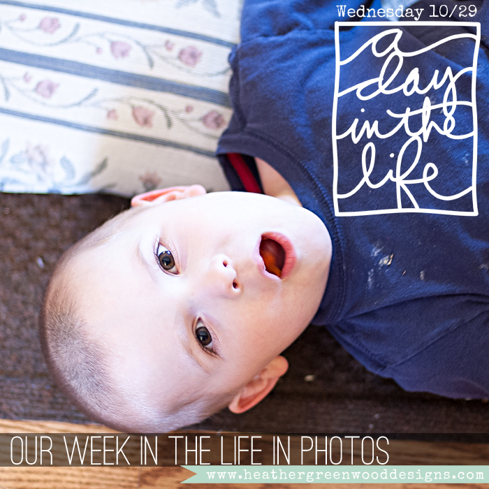 sharing Wednesday's photos from the Greenwood Week In The Life 2014