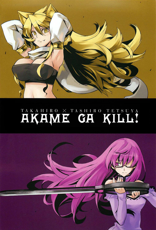 Akame Ga Kiru