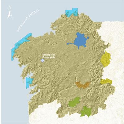 Mejores lugares para turismo ornitológico en Galicia