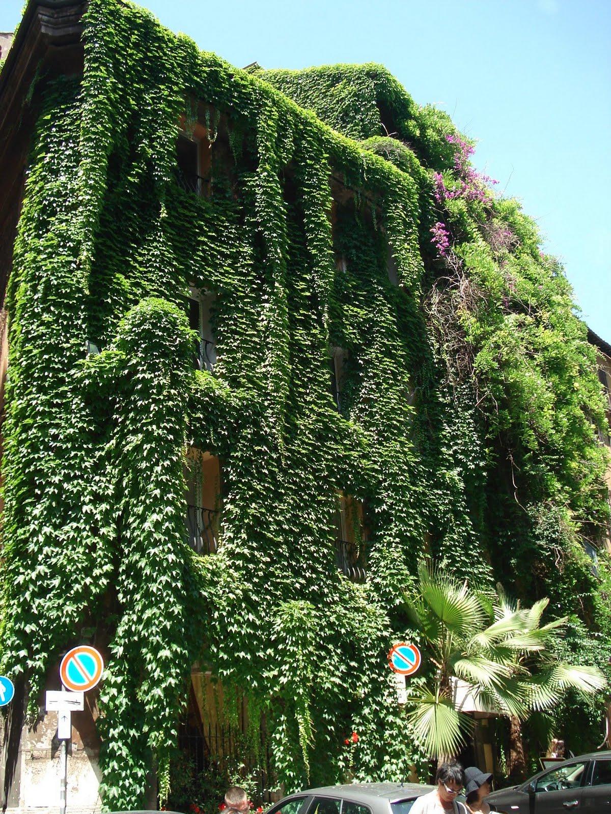 Naturcan 10 2013 for Jardines verticales precios