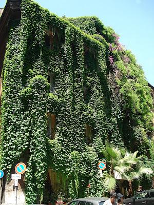 Jardin vertical Roma