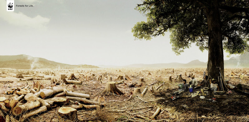 WWF Message - Forests for Life