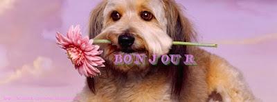 Couverture facebook rose Bonjour