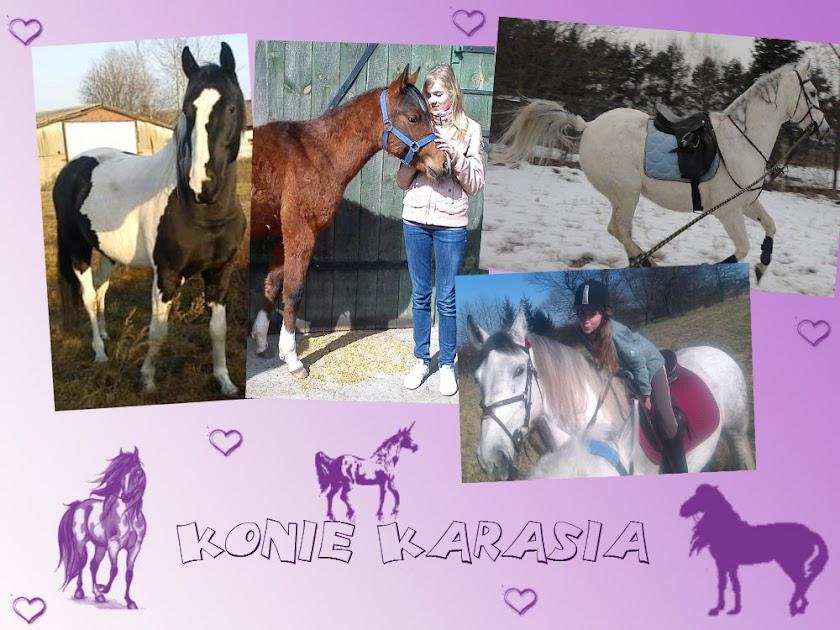 Konie Karasia