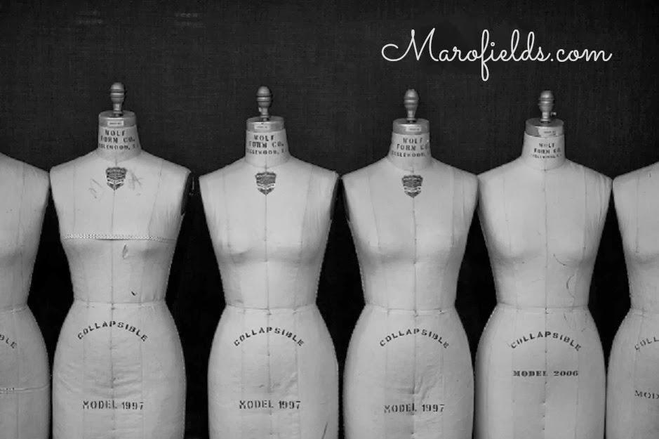 Marofields