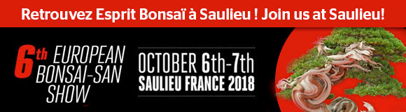 6th European Bonsai-san Show 6-7 October 2018