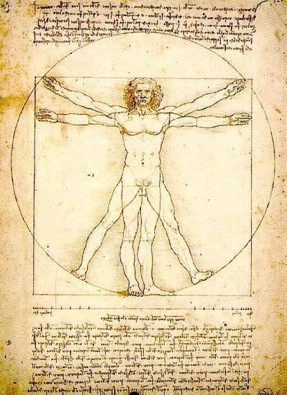 Fisioterapia: ¿Qué es la Anatomía Humana? Resumen.