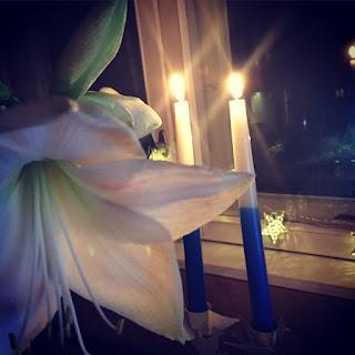 amaryllis ja itsenäisyyspäivän kynttilät