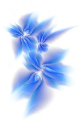 Blue Flower Ipod Wallpapers
