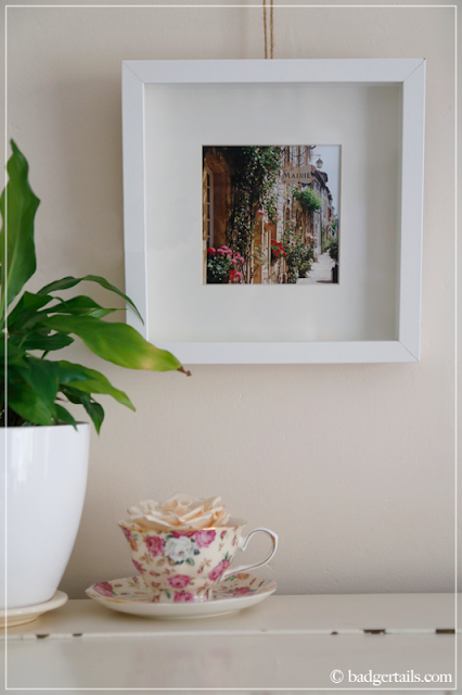 Framed Photograph of French Street with Plant