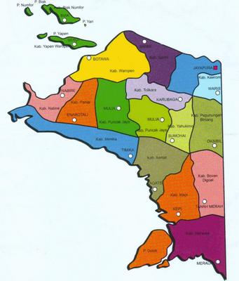 Info Papua Selatan Dpr Setuju Propinsi Papua Selatan