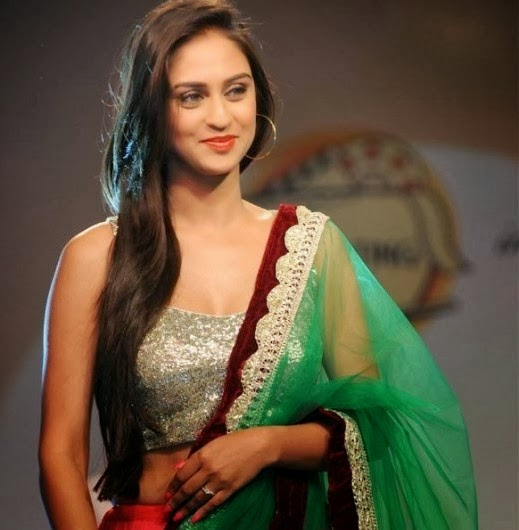 Krystle Dsouza hot hd wallpaper free download 2014