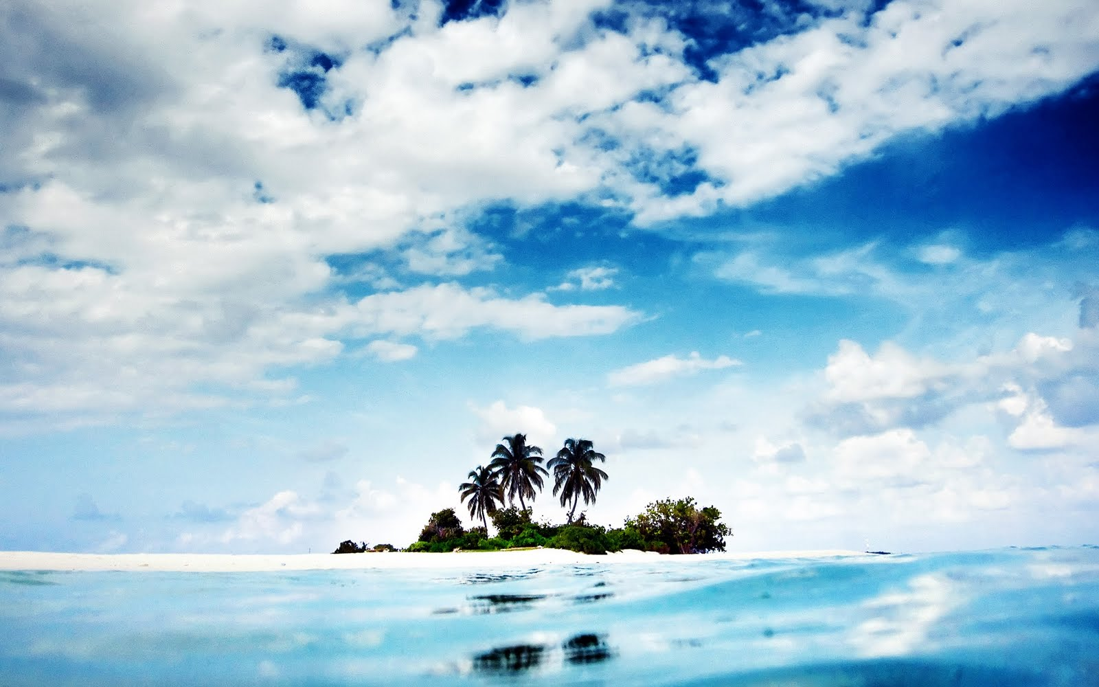 Isla de palma perdida - Lost palm island