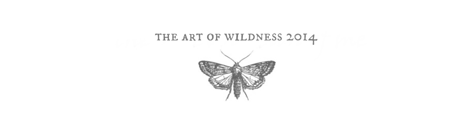 the art of wildness 2014