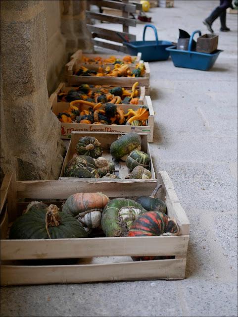 Citrouilles, coloquintes participent à la décoration du cloître Saint-Sauveur de Redon, pour la fête de la Teillouse